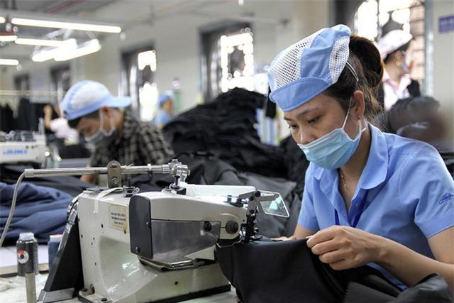 Tôm, cá ngược dòng, thăng hạng quyền lực mềm, DN tăng tuyển dụng.. kinh tế Việt Nam tiếp đà phục hồi - Ảnh 1.