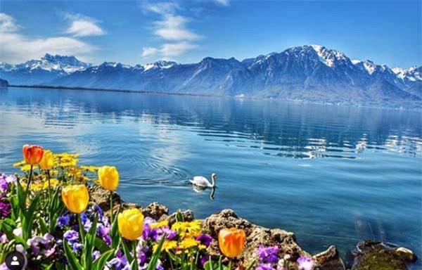 Chiêm ngưỡng Thụy Sĩ, đất nước của giấc mơ cổ tích ảnh 4
