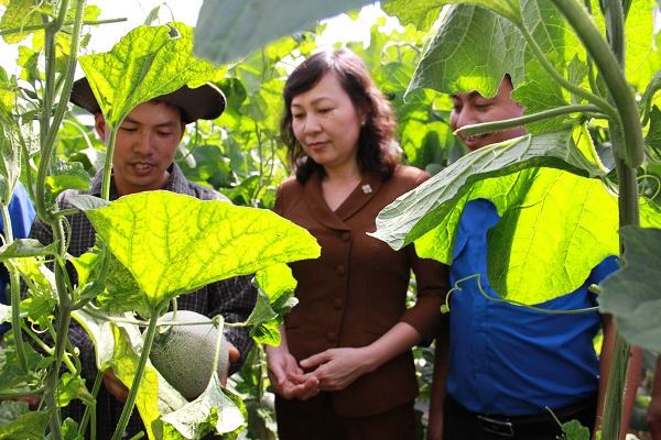 Anh Lê Văn Thiềng (bìa trái) chia sẻ về những thuận lợi, khó khăn trong quá trình khởi nghiệp cùng Phó Bí thư Thường trực Tỉnh ủy Huỳnh Thị Hằng (giữa),