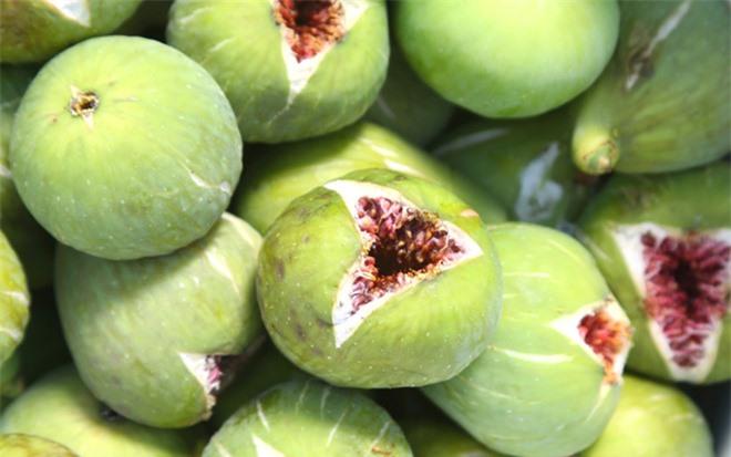 figs-shutterstock_110764127_xswn