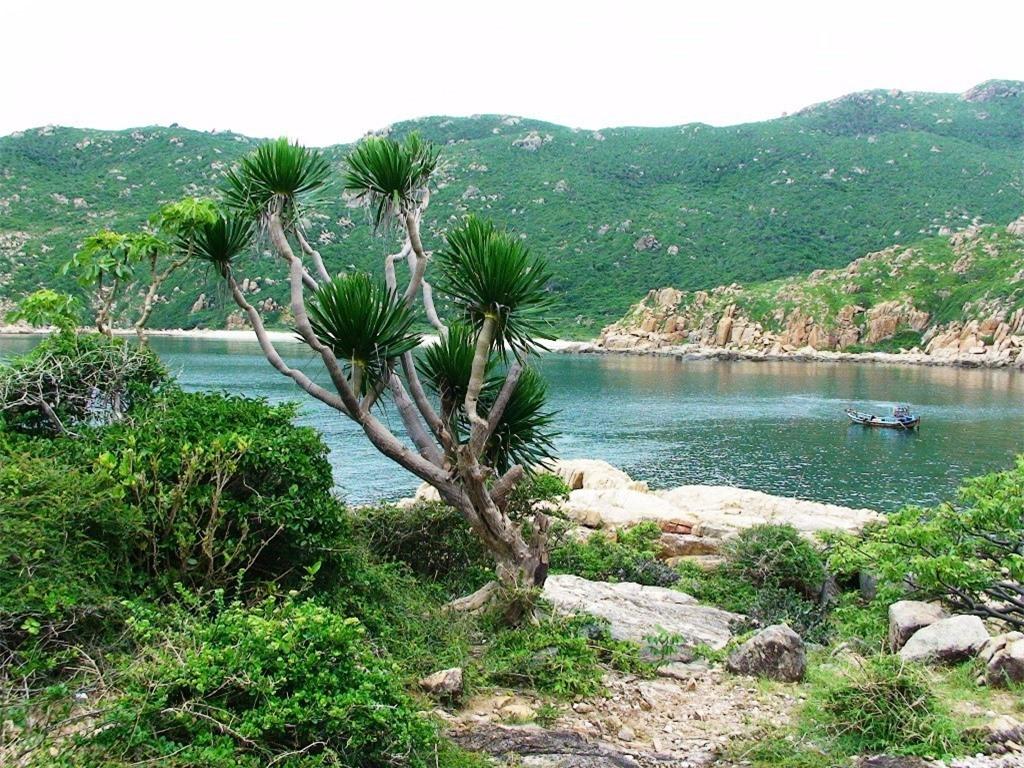 10 điểm dừng chân tuyệt đẹp ở Phan Rang ảnh 6