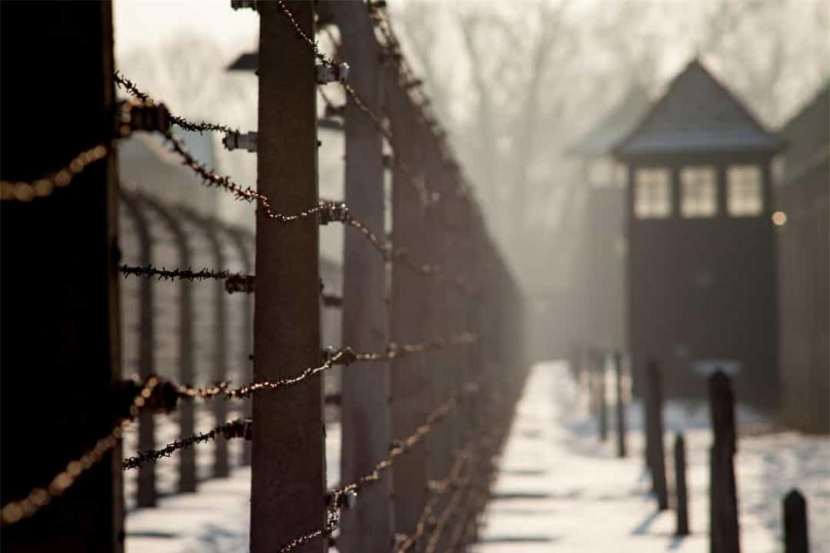Hơn 1/3 dân số Do Thái ở Đức đã bị giết hại trong suốt thảm họa diệt chủng Holocaust do Đức Quốc xã tiến hành trong Thế chiến II.