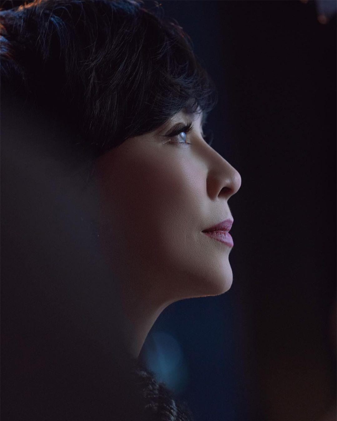 Sắc vóc U60 rực rỡ của 'nữ hoàng màn ảnh' Lưu Gia Linh ảnh 17