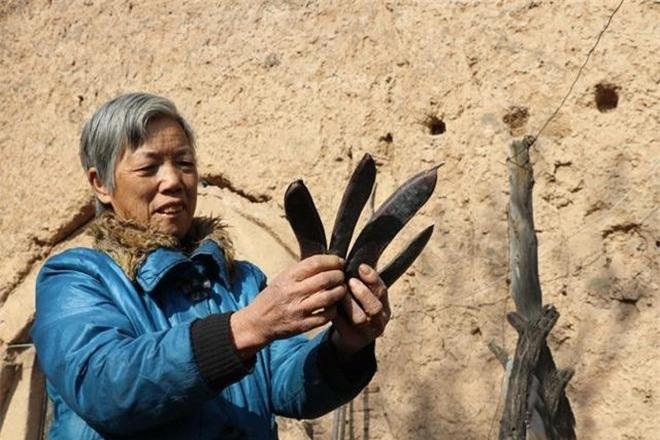 Bí ẩn cây cổ thụ 400 năm, chữa được nhiều bệnh cho dân làng ảnh 3