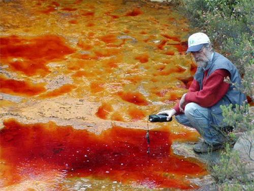 Lạ lùng dòng sông đỏ như máu ở Tây Ban Nha ảnh 4