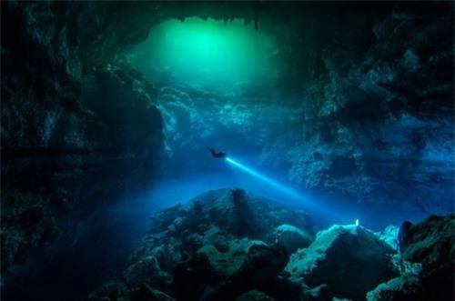 Khám phá thế giới đại dương qua ảnh - 1