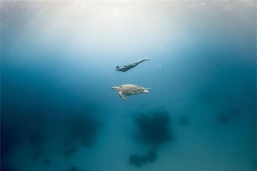 Khám phá thế giới đại dương qua ảnh - 6