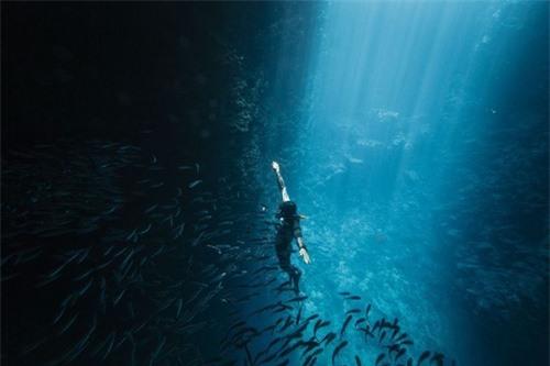 Khám phá thế giới đại dương qua ảnh - 8