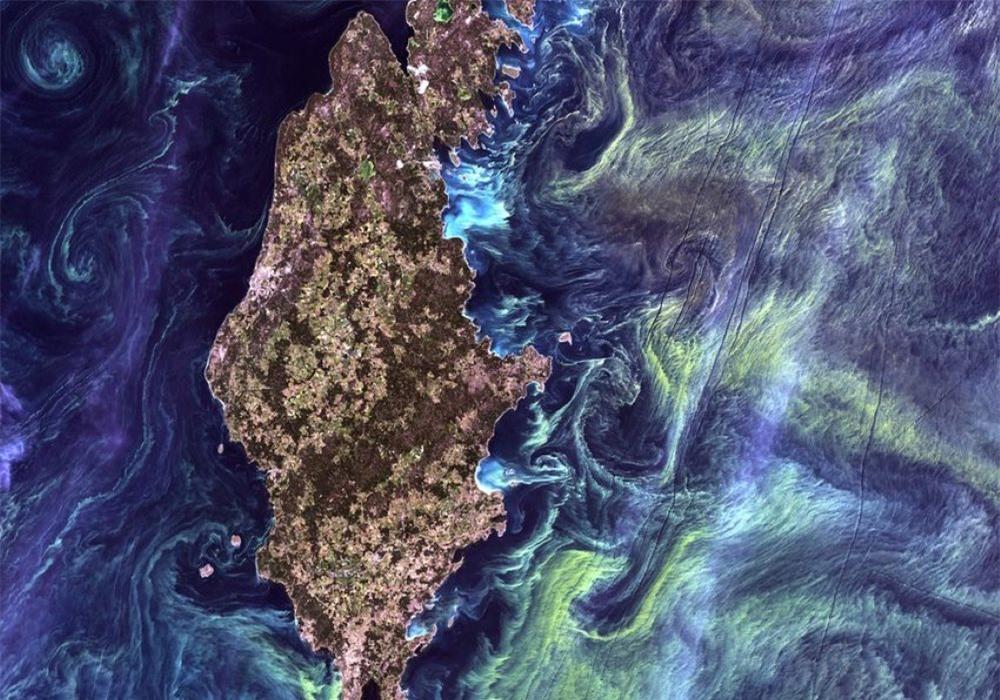 Màu xanh sâu thẳm của nước biển là biểu hiện của sự chết chóc? - 5