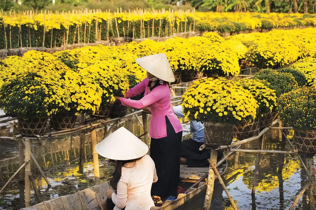 Trên bến sông, những chàng trai cô gái đang chuyền tay nhau vô vàn chậu hoa để chở về thành phố, chở lên Sài Gòn, chở đi muôn nơi làm đẹp cho đời