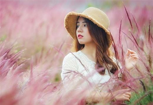 Lâm Đồng: Đồi cỏ hồng đẹp như truyện tranh