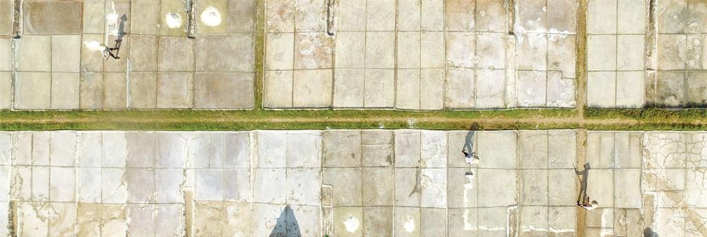 Nơi đây, những cánh đồng muối được chia thành từng ô, từng hàng, chạy dài thẳng tắp.