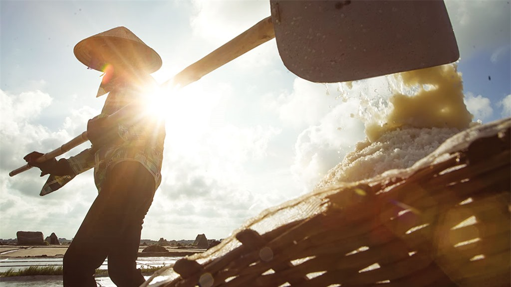 Những diêm dân Bạch Long luôn làm việc dưới cái nắng gay gắt miền biển