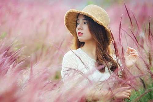 Đồi cỏ hồng đẹp như truyện tranh ở Lâm Đồng