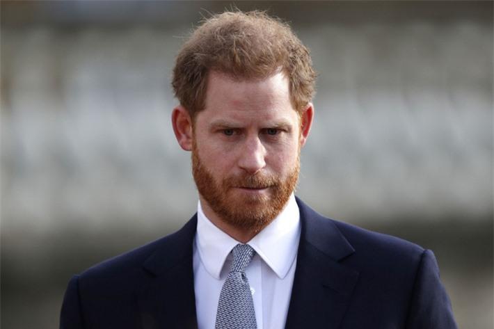 Hoàng tử William và em trai Harry đồng loạt lên tiếng về sự ra đi của Hoàng tế Philip - Ảnh 3.