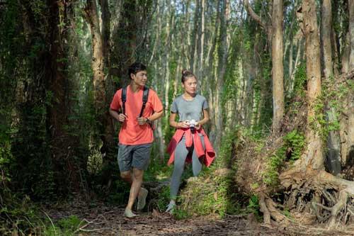 Khu rừng nguyên sinh gần Vũng Tàu hút khách check-in