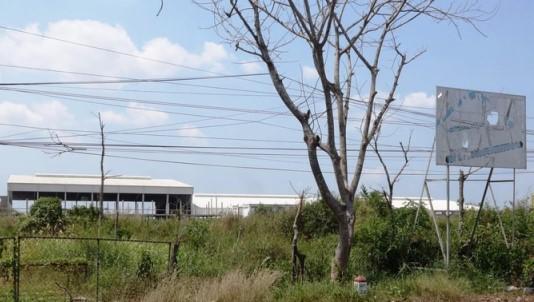Dự án cụm Nhà máy chế biến Nông thủy sản xuất khẩu gần 10 hecta do doanh nhân Nguyễn Huỳnh Đạt Nhân đầu tưang