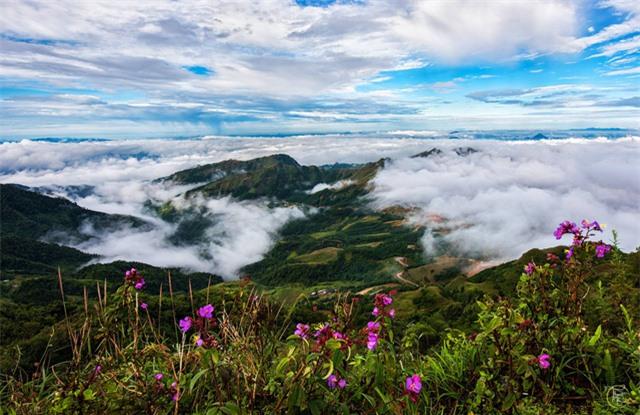 Vẻ đẹp bốn mùa trên núi Mẫu Sơn - Ảnh 11.