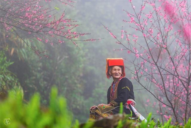 Vẻ đẹp bốn mùa trên núi Mẫu Sơn - Ảnh 14.