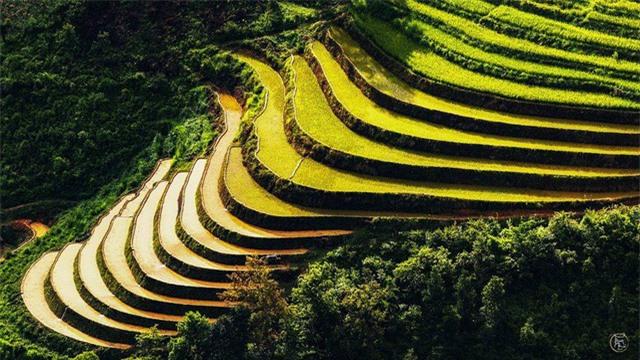 Vẻ đẹp bốn mùa trên núi Mẫu Sơn - Ảnh 10.
