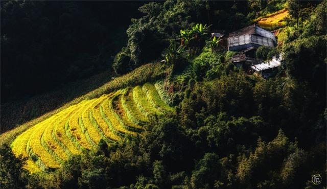 Vẻ đẹp bốn mùa trên núi Mẫu Sơn - Ảnh 16.