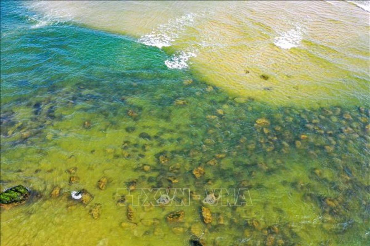Những tảng đá phủ đầy rêu xanh ẩn hiện trong làn nước biển tạo nên màu sắc đẹp lạ khi thủy triều rút dần.