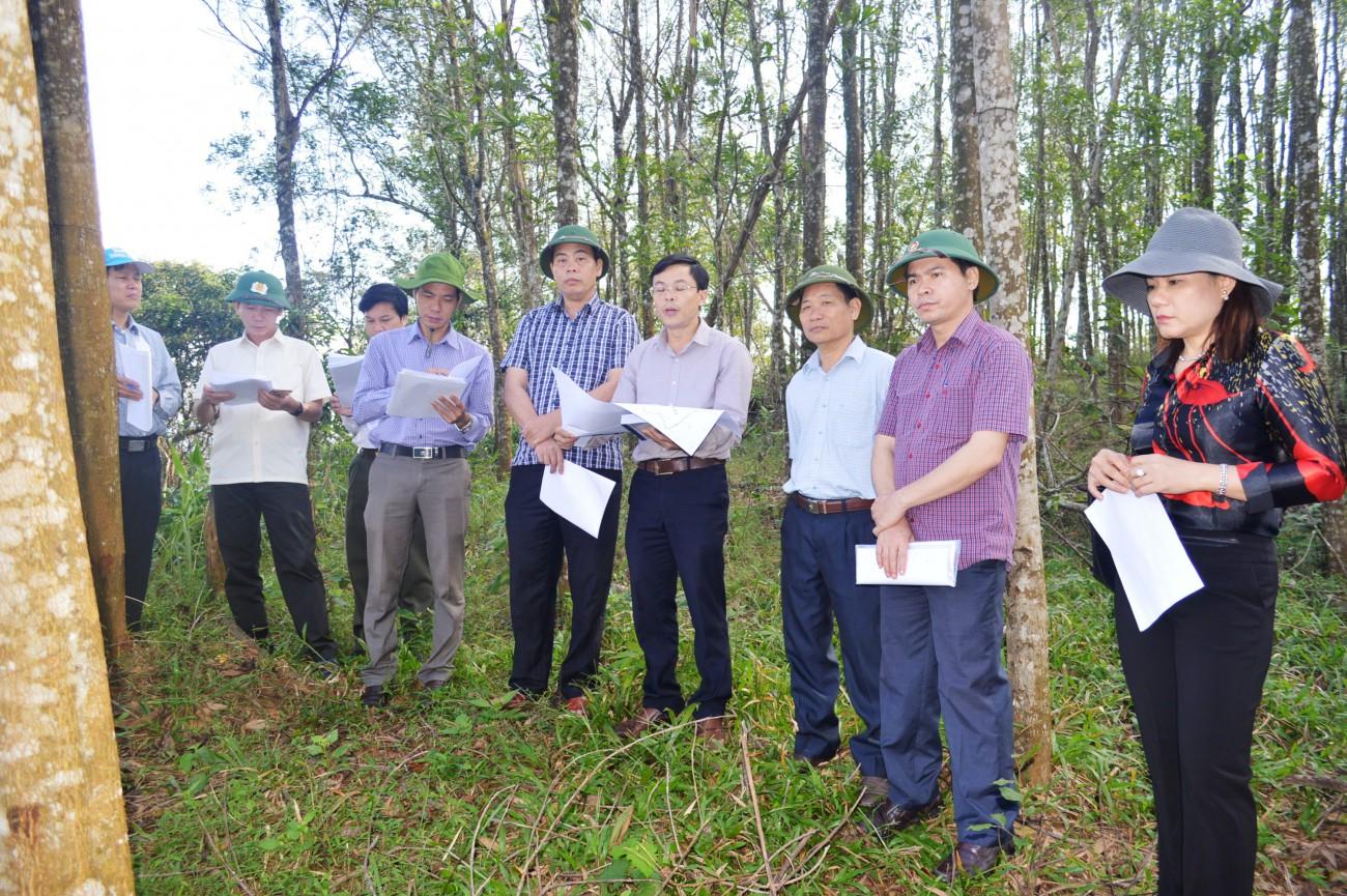 Lãnh đạo tỉnh Quảng Trị đi khảo sát thực tế ở huyện Hướng Hóa, Quảng Trị
