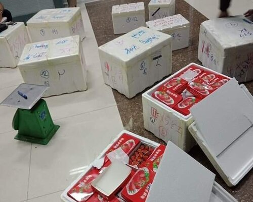Cảng hàng không Liên Khương tiến hành kiểm tra tại khu vực hàng hóa, phát hiện 13 thùng xốp, bên trong chứa các hộp giấy màu đỏ, đựng quả dâu tây tươi
