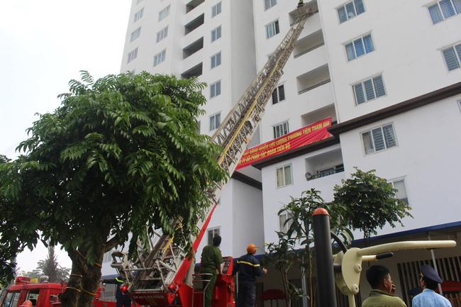 Hệ thống PCC là hệ thống cơ bản mà bất cứ công trình nào cũng phải trang bị để đảm bảo sự an toàn về con người và tài sản, đặc biệt là các khu chung cư, phức hợp, nơi sinh sống của cả nghìn cư dân.