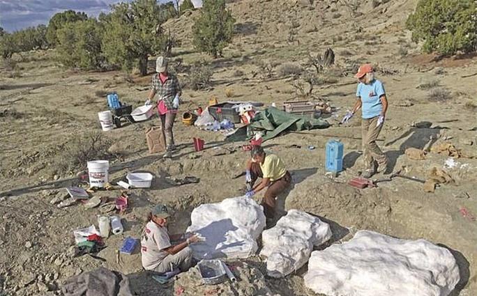 Phát hiện mộ tập thể của khủng long - sói khủng khiếp nhất mọi thời đại - Ảnh 2.