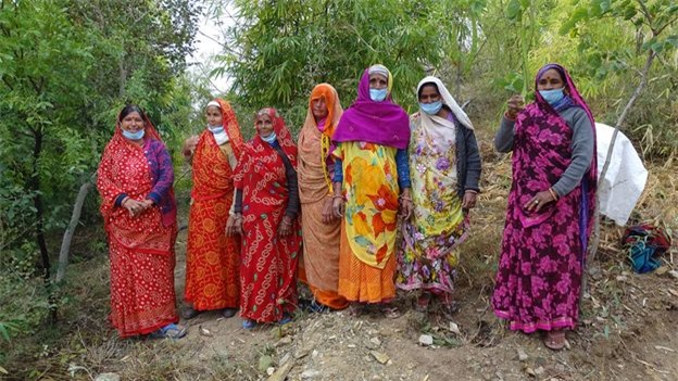 Ngôi làng ở Ấn Độ trồng cây xanh mỗi khi có bé gái sinh ra   - Ảnh 3.