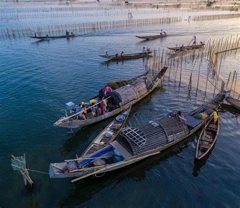 Phá Tam Giang say lòng du khách