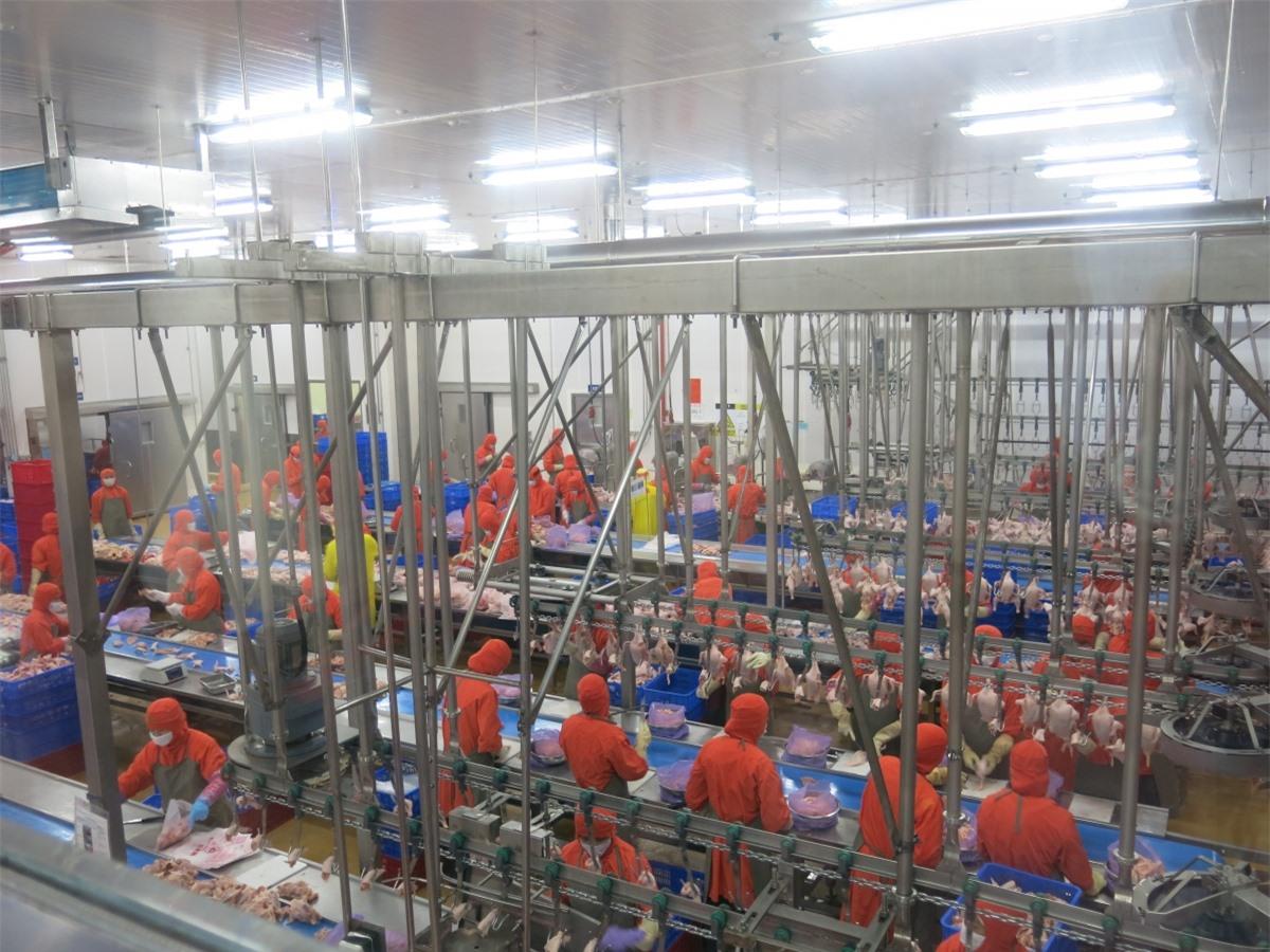 Nâng cao chất lượng nguồn lao động là cơ sở để tăng năng suất lao động.