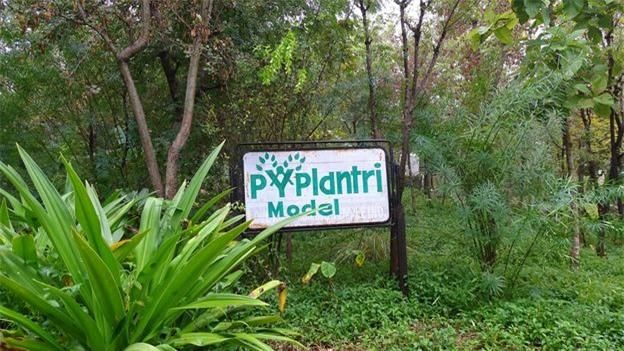 Cộng đồng nhỏ Piplantri đã trở thành hình mẫu cho chủ nghĩa môi trường và nữ quyền. Ảnh: Bhavya Dore