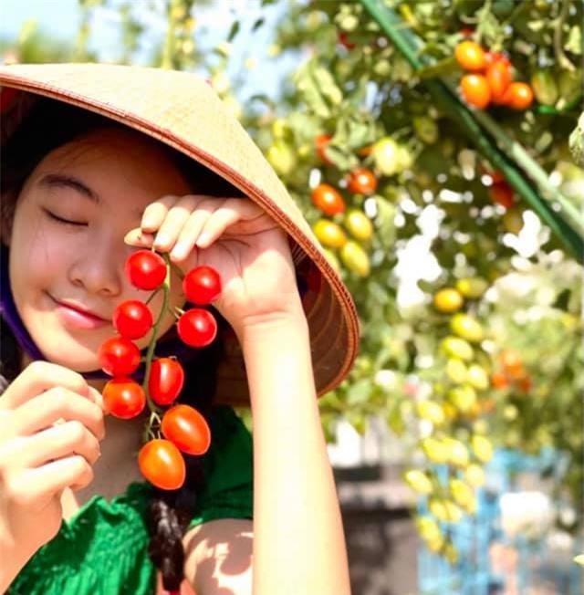 Đội nón lá ra vườn thu hoạch cà chua mà con gái Lọ Lem của Quyền Linh vẫn xinh đẹp, gây xao xuyến thế này đây - Ảnh 3.
