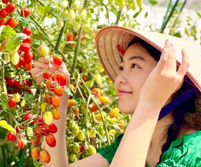 Đội nón lá ra vườn thu hoạch cà chua mà con gái Lọ Lem của Quyền Linh vẫn xinh đẹp, gây xao xuyến thế này đây - Ảnh 4.