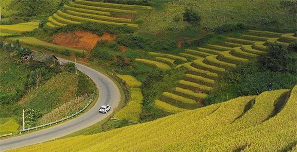 Đèo Khau Phạ, Yên Bái. Nguồn ảnh: Internet