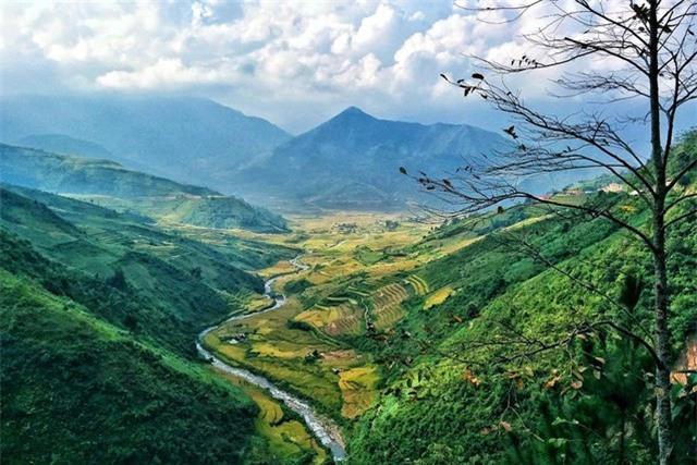 Khung cảnh ở đèo Khau Phạ đẹp nhất vào mùa lúa chín.  (Ảnh: Trang Pear)