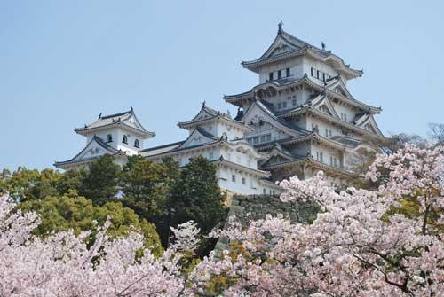 Chiêm ngưỡng lâu đài Osaka - biểu tượng chính của Nhật Bản