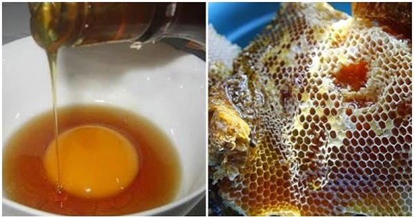 4 thời điểm mật ong biến thành chất độc, vừa mất tác dụng lại gây suy thận nặng nề 0