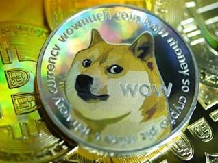 Đồng tiền ảo tạo ra cho vui đã tăng gần 25.000% trong 6 tháng