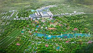 Dự án Felicia City Bình Phước thu hút nhà đầu tư nhờ hoàn tất pháp lý