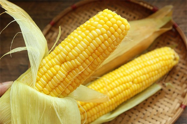 Ngô ngon nhưng cực độc nếu ăn nhiều, có thể gây viêm ruột hoặc các bệnh mãn tính 0