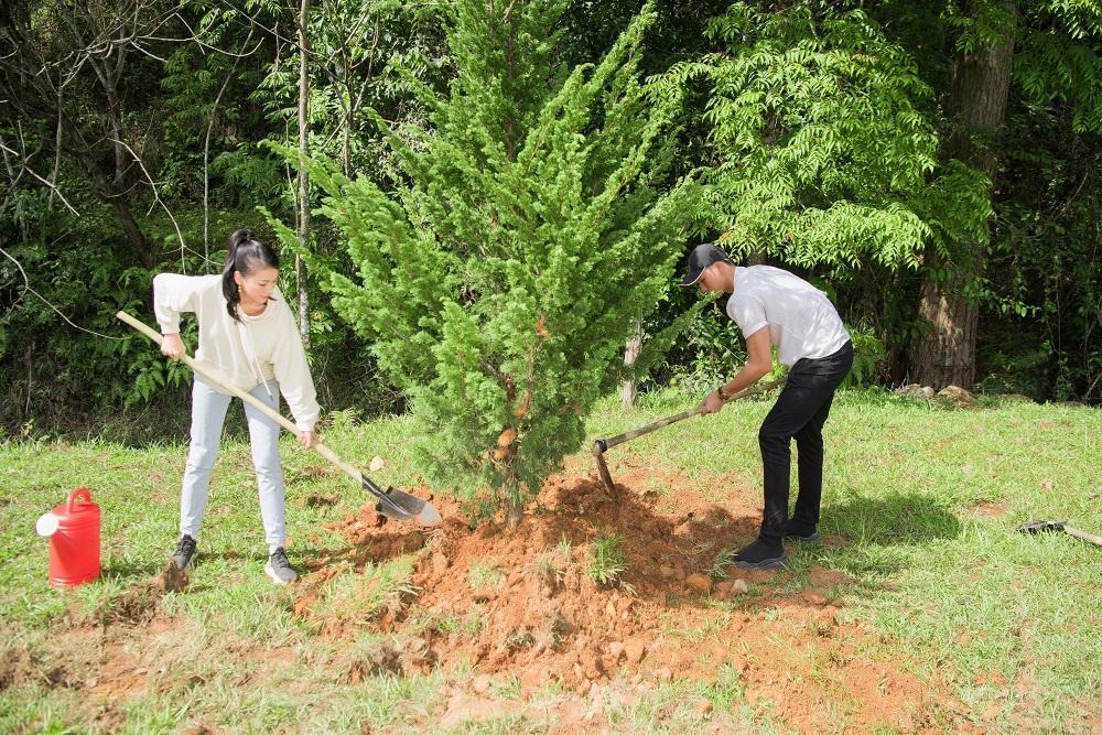 Cùng nhau trồng cây.