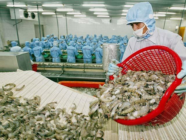 Doanh nghiệp thuỷ sản kiến nghị TP.HCM hoãn thu phí hạ tầng cảng biển