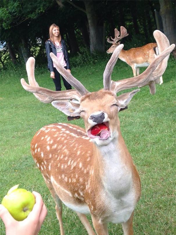 Khuôn mặt vui sướng khi được ăn
