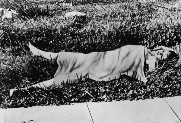 Vụ án nữ diễn viên bị sát hại rùng rợn, 70 năm vẫn chưa biết hung thủ - 2