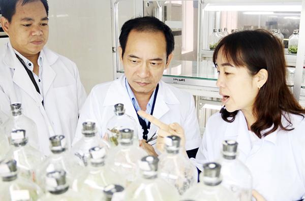 Đà Nẵng: Tháo gỡ khó khăn, thúc đẩy hình thành và phát triển doanh nghiệp KH&CN