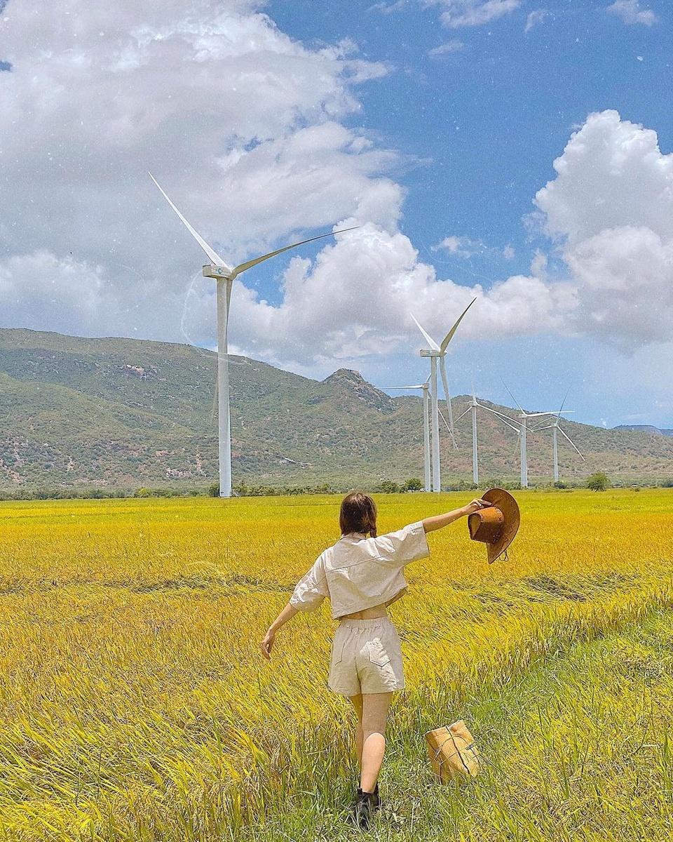 Đến huyện Thuận Bắc, du khách có thể check-in với cánh đồng điện gió Đầm Nại, nơi được nhiều bạn trẻ ví von đẹp tựa trời Âu. Huyện Thuận Bắc nằm về phía bắc tỉnh Ninh Thuận, giáp với tỉnh Khánh Hòa, hiện chỉ có 6 xã, không có thị trấn. Ảnh: Nguyễn Ý Nhi.