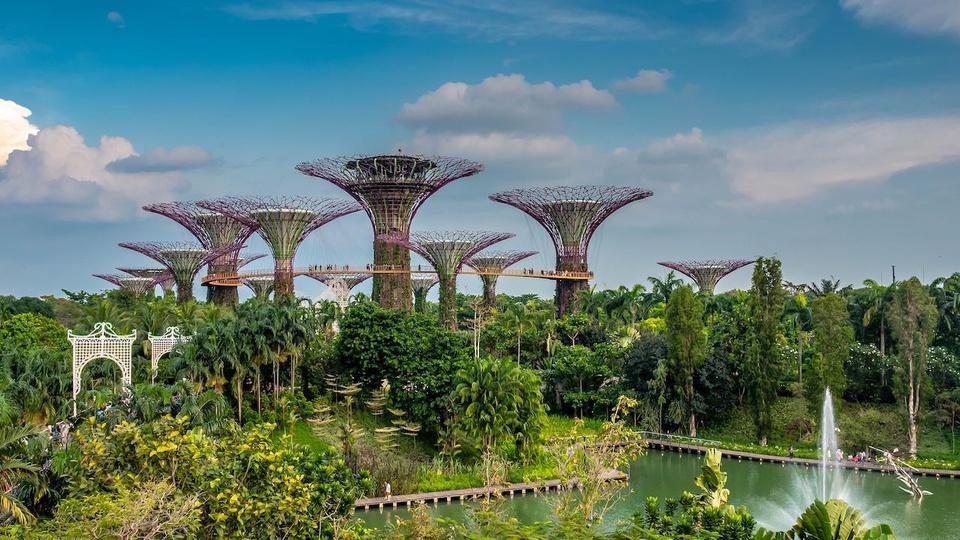 Theo sách Đông Nam Á – Các di tích lịch sử, thắng cảnh, vườn bách thảo Singapore Botanic Gardens là một trong những điểm du lịch hấp dẫn nhất của đất nước này. Vào tháng 7/2015, khu vườn đã được UNESCO công nhận là Di sản thế giới, trở thành khu vườn đầu tiên ở châu Á, thứ 3 trên thế giới được UNESCO đưa vào danh sách di sản. Ảnh: Wikipedia.